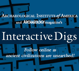Interactive Digs