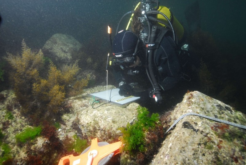 underwater archaeology the nas guide to principles and practice