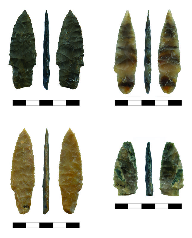 Radiocarbon dating archaeology-in-Sumner