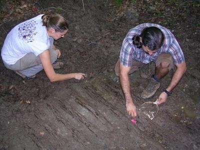 Archaeologists excavating a corduroy road at the Civil War park (credit: Dovetail Cultural Resource Group)