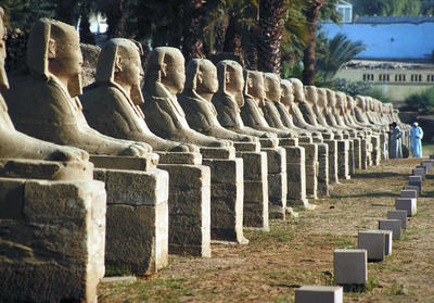 Avenue of Sphinxes, Luxor. Image by R. Todd Nielsen