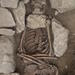 Mortuary Archaeology Field School at Zamartze