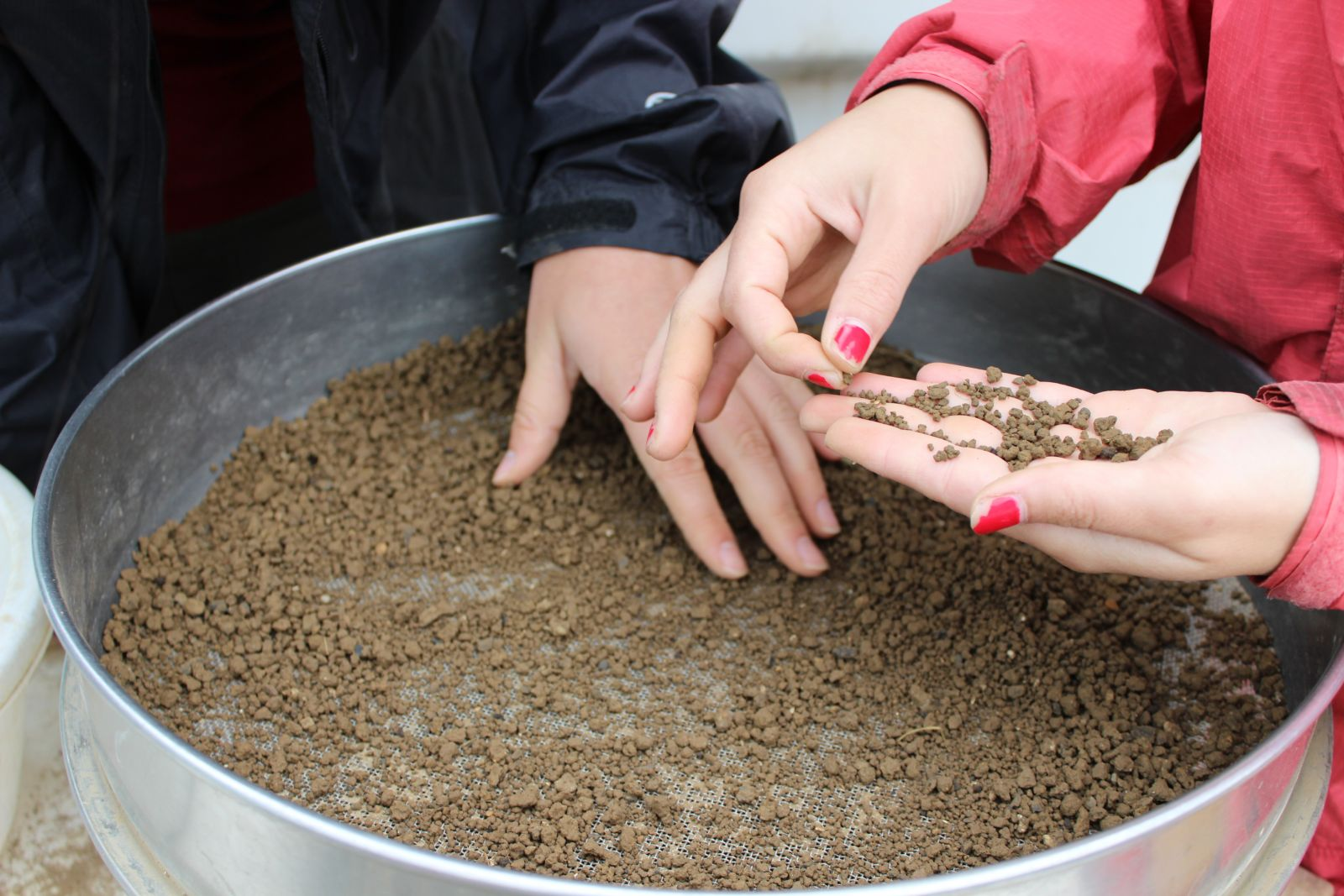 Coarse Sieving