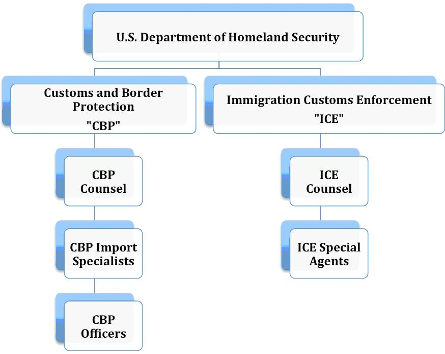 U.S. Department of Homeland Security Organization Chart