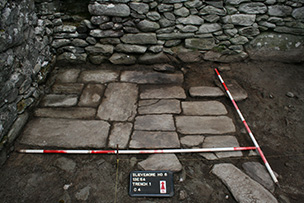 Fig 4-Internal Floor in Slievemore House 6